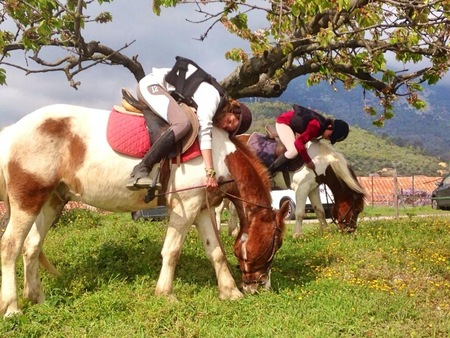 poney levens